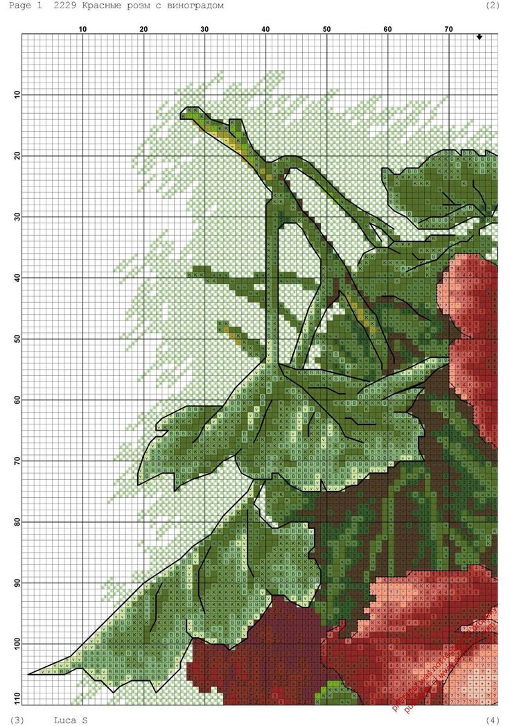 rosas-rojas-2.jpg (1124×1600)