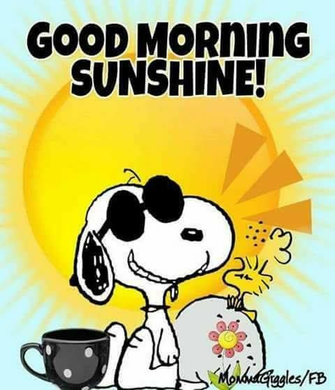 Good morning Sunshine......my Mother has always called me her little miss Sunshine girl & used to wake me up singing, Good morning Sunshine & tickling my feet!!!!! Love you Mom for always, your little miss Sunshine girl!!!!! XOXOXOXOXO