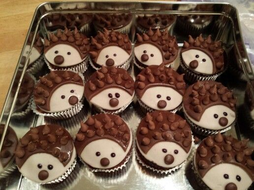 Hedgehog fairy cakes.