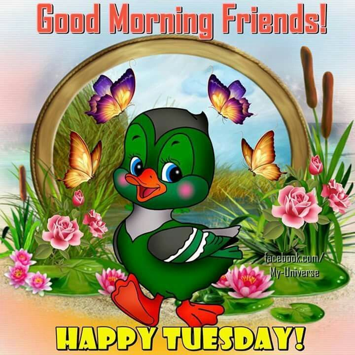 Good Morning Friends! Happy Tuesday!