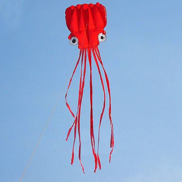 4m Octopus Soft Flying Kite 6 Colors with 200m Line Kite Reel Specifications: Material: Grid Cloth Kite Weight: 200g Expanded Size: 4m*0.7m Folding Size: 20*20cm Kite Reel Size: 18cm Color: Black, Orange, Pink, Red, Purple, Blue Features: This kite is single line kite software, no skeleton. The kite can fly in 2 stage wind. The […]