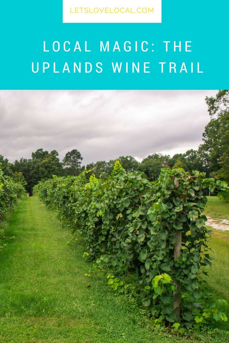 Central Illinois Wine Tours