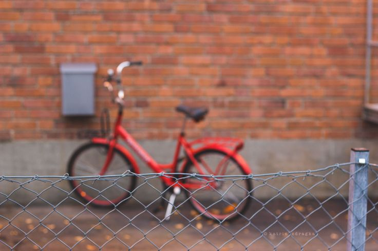 Life between -- - A fence , A brick wall, and Life between. A stunning red bike and orange brown autumn leaves.