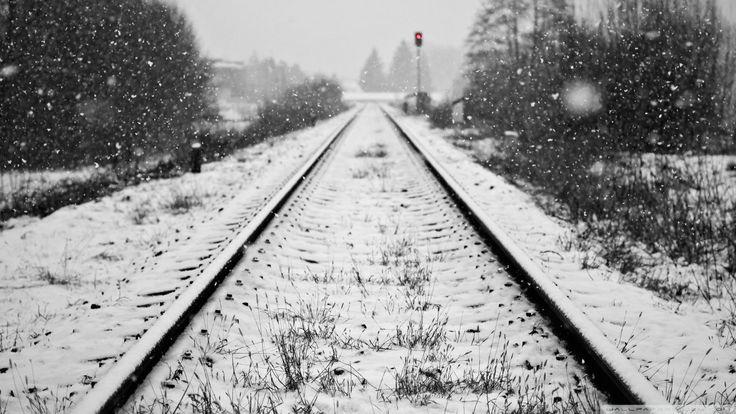 Холодные стихи пишутся зимой...  Рельсы-рельсы  Узел в памяти был, как железнодорожный… Остывала земля, пересыхал, что ручей, вокзал, окруженный таксистами, желтой кленовой дрожью. Оброненный в жизнь котенок под креслами замерзал. Город L, известный тем, что в него отправляли в ссылку литераторов и др. убогих. Болоньевое пальто, под которое мама прячет шерстнатого и обнимает сильно, мы не так много можем, мама, но пригреем самого серого из котов.   На другом узле – солнце давит на землянику…