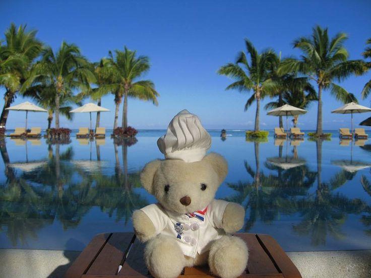 #LeCordonBleu Béchamel #Bear is enjoying the sunshine in Mauritius!