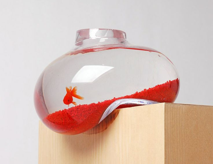 42 best betta fish tank ideas images on pinterest betta for Fish bowl heater