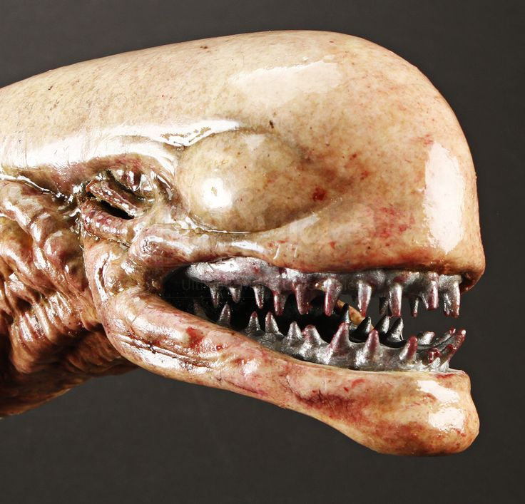 Alien 3 Movie: Prop Store - Ultimate Movie