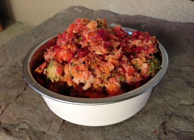 Healthy Homemade Dog Food Recipes