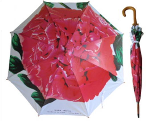 Umbrella: Peony | Floral | The Perfect Day