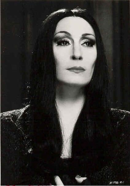 normal is an illusion what is normal for the spider is chaos for the fly - Morticia Addams