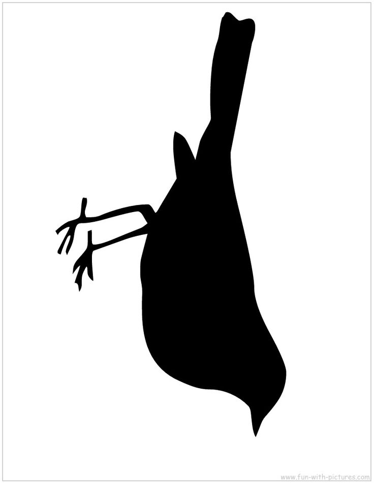 Bird silhouette to print