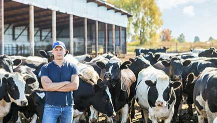 Do you buy local? http://farmproperty.com.au/news/74-do-you-buy-local Supermarkets are now selling out of local dairy milk while the cheap milk that is damaging this industry are left untouched on shelves.   #AussieDairy #DairyFarmers #DairyMilk