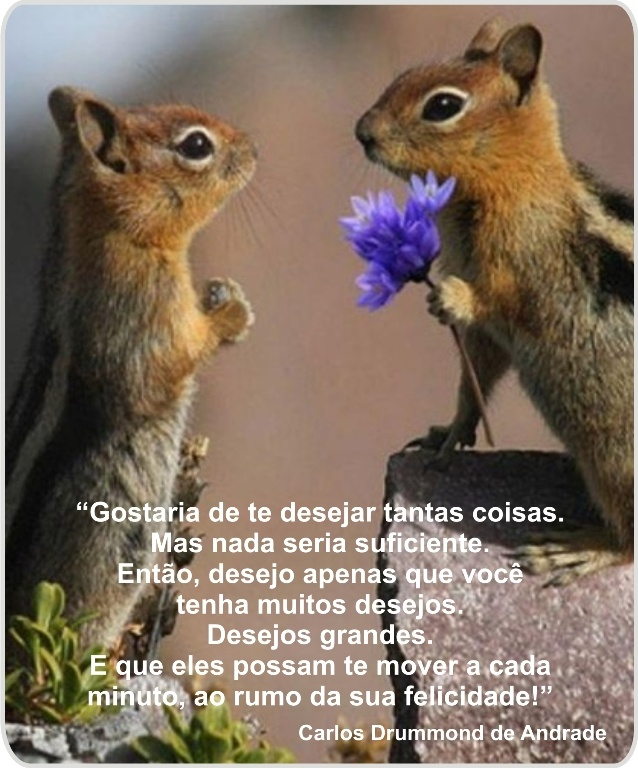26 Best Images About Frases De Aniversario On Pinterest