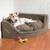 Corner Dog Bed Options for Your Dog