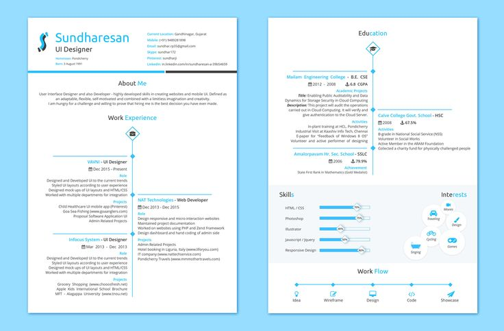 Clean and Neat Two page resume