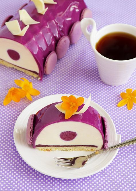 Bush blueberry cake with cream and creamy mousse.
