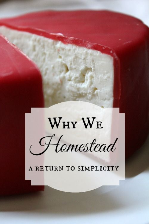 Why we homestead.