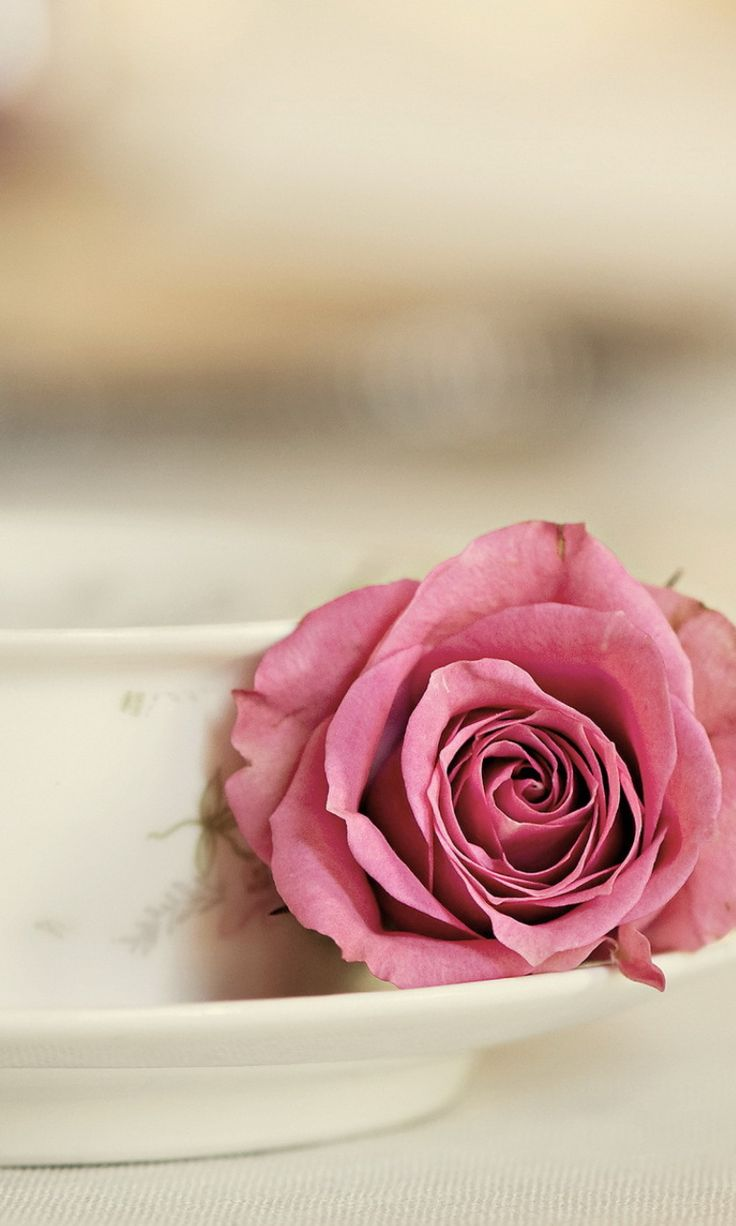 Elegant rose. 26 Happy Valentine's Day Flowers Wallpapers for iPhone. #768x1280 - @mobile9