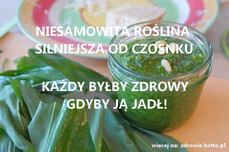 zdrowie.hotto.pl-czosnek-niedzwiedzi-wlasciwosci-przepis