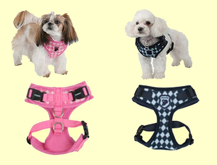 Argyle (winter) harness from Puppia!  This winter harness is available in 2 colours (Navy or Pink) and is currently only available in Large or x-large. Regularly retails for $26.00 but is now on sale for only $12.00. Hurry before they are gone!
