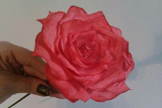Suodatinpussi ruusu