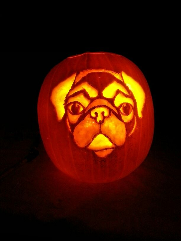 17 Best Images About Pug Carving Stencils On Pinterest