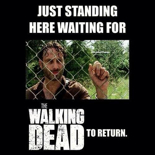 TWD. The Walking Dead. Waiting for Season 5!! Rick Grimes.