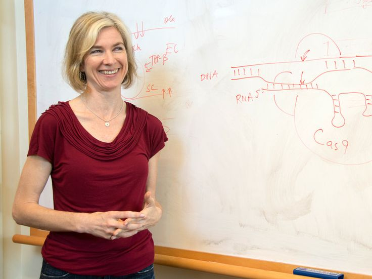 Jennifer Doudna and her colleagues found an enzyme in bacteria that makes editing DNA in animal cells much easier.http://www.npr.org/blogs/health/2014/10/13/354934248/in-hopes-of-fixing-faulty-genes-one-scientist-starts-with-the-basics