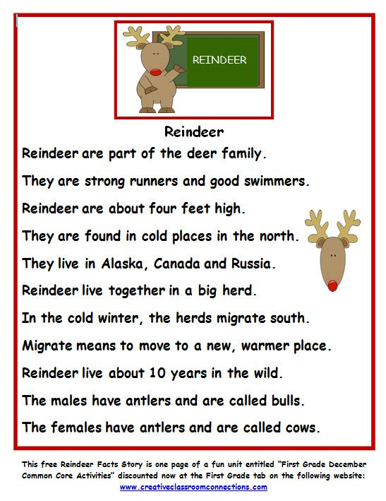 "Free Reindeer Fact Story from a complete unit called ""First Grade December Common Core Activities"". It can be found on tpt or at the website: www.creativeclassroomconnections.com."