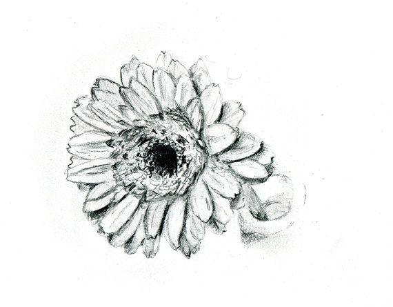 Originele tekening van een gerbera bloem Bloem door Zendrawing, €30,00
