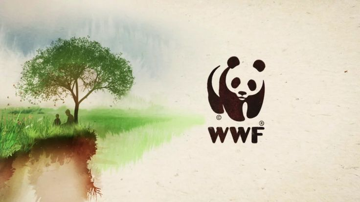 This is the Director's Cut of our WWF spot in English. Check it out.  Directors: Philipp Zünd & Mike Huber Producers: Rosas'n'Co Agency:…