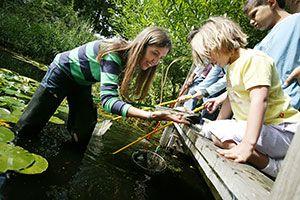 Children at pond
