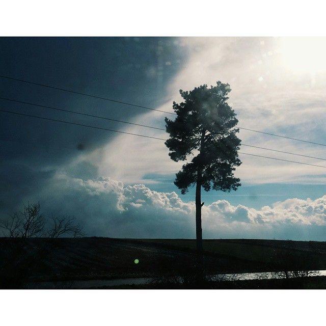 #droga#do#domu#nature#Poland #travel#podroz #pkp#tree#sky#clouds #beautiful #vscocam #vsco #instagood@instanature_789