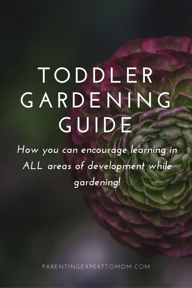 Toddler Gardening Guide:  How to Encourage Development in All Areas