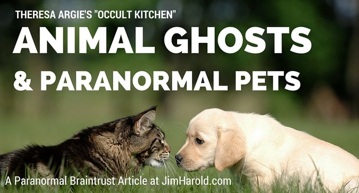 Animal Ghosts and Paranormal Pets – Theresa Argie
