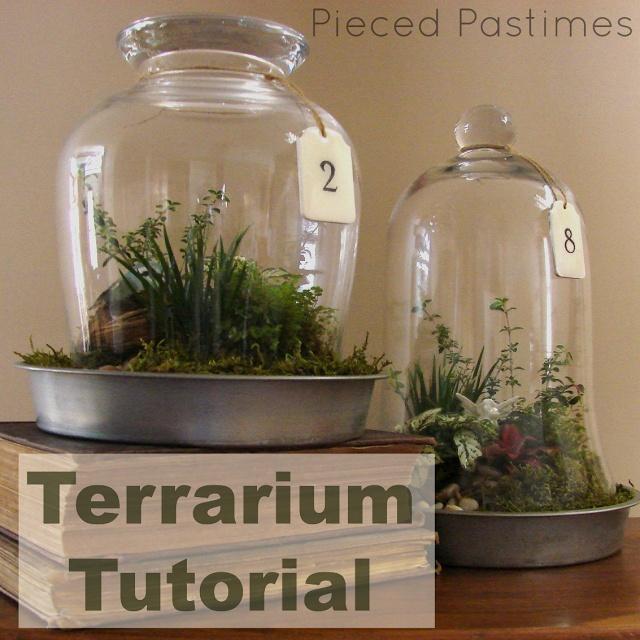Pieced Pastimes: Terrarium Tutorial - cutest DIY terrariums ever!