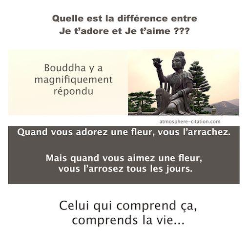 Quelle est la différence entre je t'adore et je t'aime  Trouvez encore plus de citations et de dictons sur: http://www.atmosphere-citation.com/amour/monastere-de-po-lin.html?