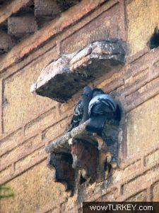Kastamonu Nasrullah Camii Doğu Cephesi'nde Yer Alan Bir Kuş Evi Örneği