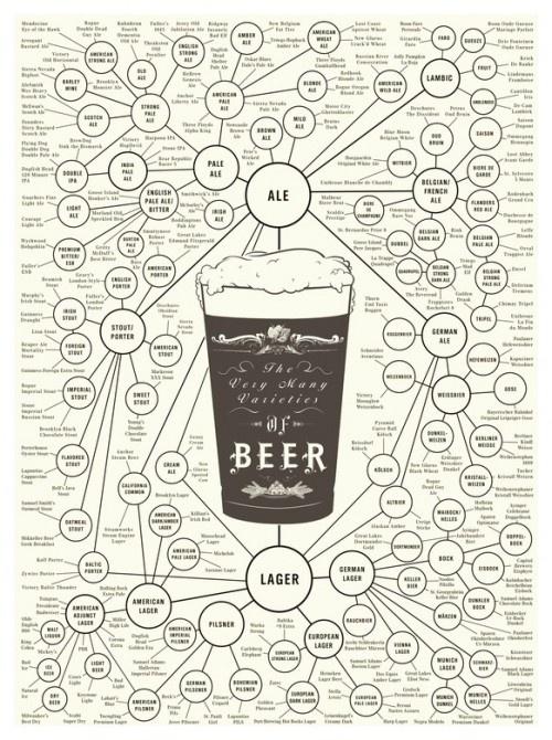 Varieties of beer: Beer Charts, Food, Beer Posters, Beer Infographic, Families Trees, Crafts Beer, Drinks, Variety, Man Caves