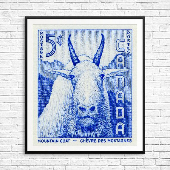 Goat, goats, mountain goat, mountain goat art, moutain goat print, mountain goat poster, Canada goat, Canada Post, Postage stamp art print