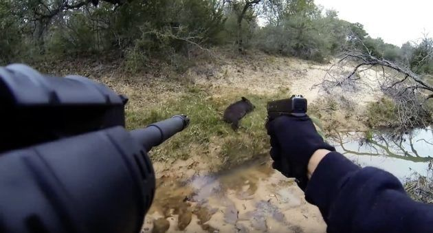 This First Person Hog Hunting Video is Straight Out of a Call of Duty Video Game