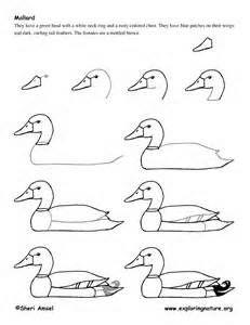 how to draw a backyard