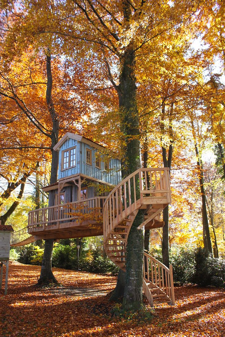 Treehouse by the Shore. A two-story treehouse fully supported by five beech trees. The spiral staircase takes you to the main level of the treehouse from which you can observe the surroundings; the spiral staircase inside leads to the second floor,...