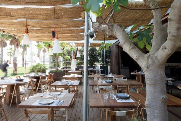 Pez Vela  Paseo del Mare Nostrum 19/21 (bajos del hotel W Barcelona)  08039 Barcelona