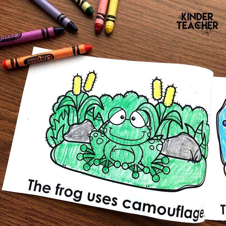 Animals In Camouflage Printable Booklet Kindergarten Books Kindergarten Math Activities Animal Books