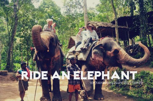 As Elephants are my favourite animals it would be amazing to ride through their natural habitat with them.
