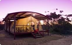 ガウラー・レンジス国立公園  カンガルー名キャンプ 南オーストラリア州