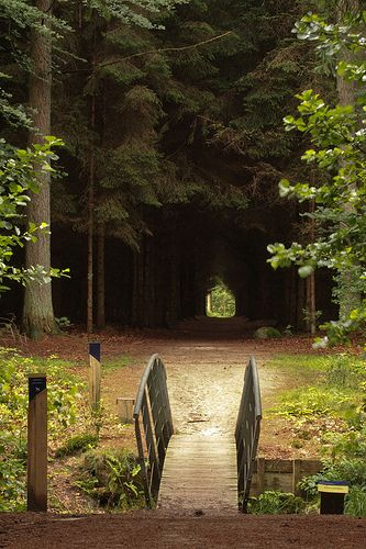 Het Plantsoen, Ravenswoud, Friesland.