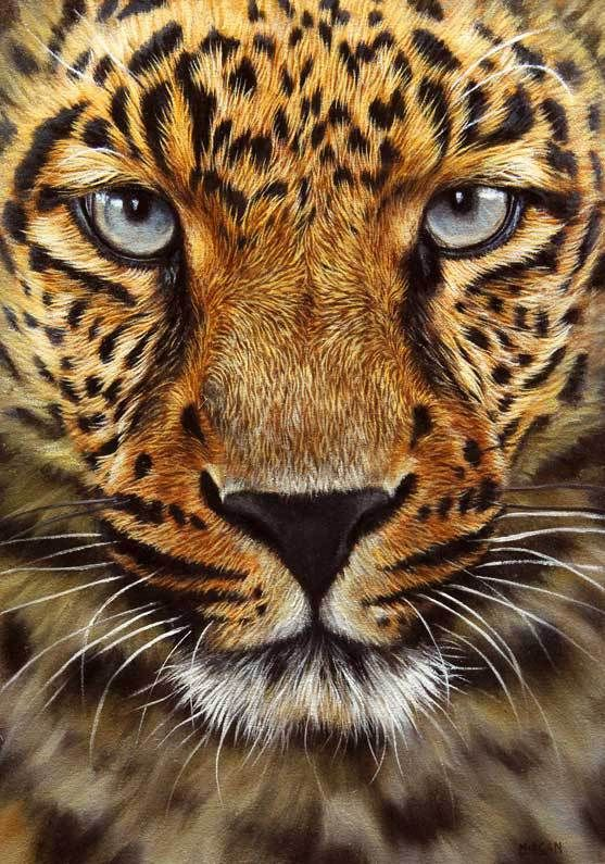 Best 25 tattoo leopard ideas on pinterest atouage de for Animal oil paintings