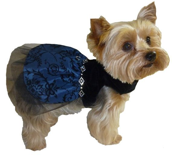 92 best dog stuff images on pinterest dog accessories Dog clothes design your own